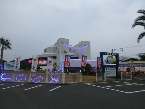 竜串・海洋館