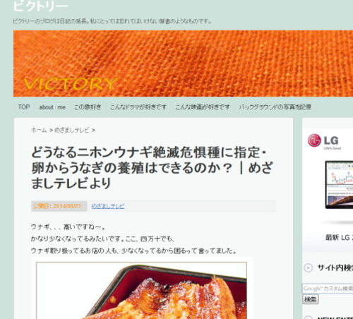 blog-2014-6-22-01