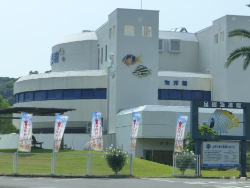 竜串-足摺海洋館