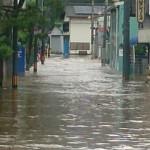 taifu-nisitosa