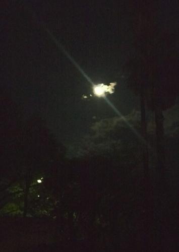 後の十三夜の次の日の月