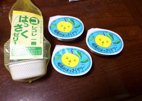 瀬戸田パーキングエリア・因島はっさくゼリー