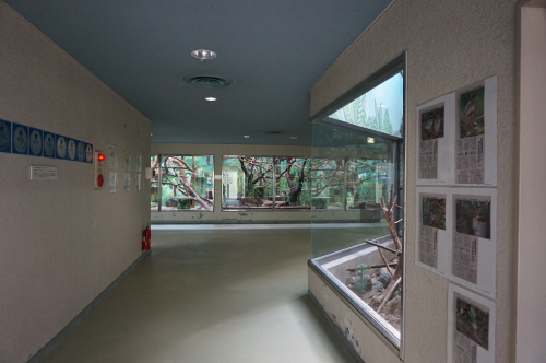 わんぱーく高知・ギャラリー館