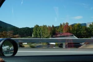 高速から見るロガーの楓