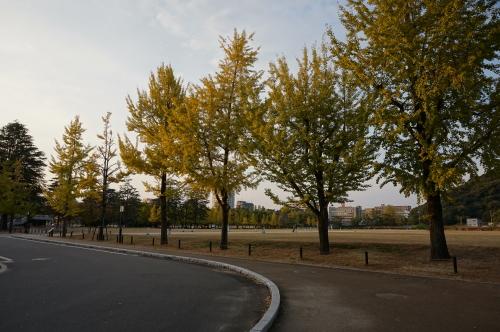 愛媛県美術館・公園