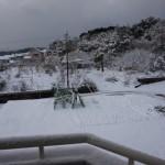 雪-2015-1-25