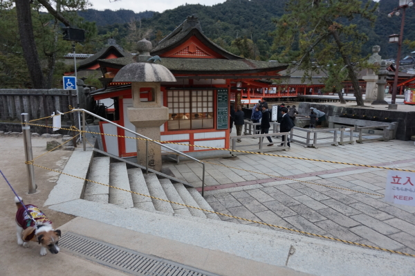 チップと厳島神社
