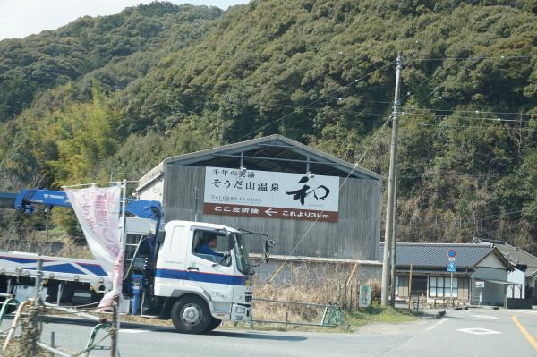 桑田山・雪割り桜