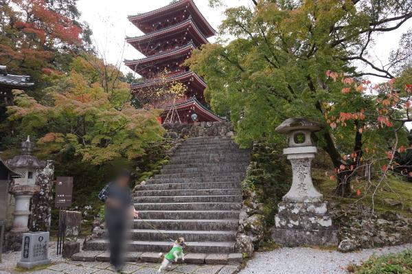 竹林寺、五重塔