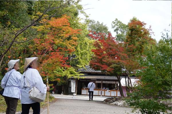 竹林寺とお遍路