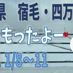 yuki202101-2